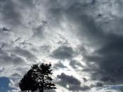 Carnet Comme après éclipse