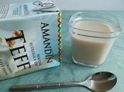 yaourts végétaux maison teff avec Sukrin (sans sucre)