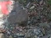 ours filmé randonneur dans d'Aran