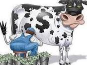 France vache lait Viadeo