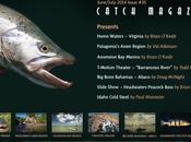 Catch n°35