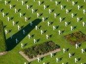 juin 1944 devoir mémoire
