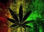 Cannabis jeux Maire Lille dessus lois