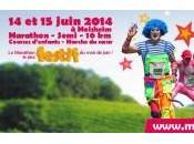 Marathon Vignoble d'Alsace 2014 100eme largement reussie!