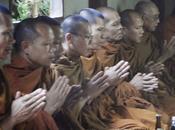 Thaïlande chasse moines indélicats ouverte [HD]