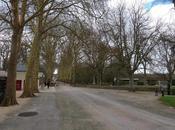 Visite Pays Loire, Touraine Sologne Part Chenonceau