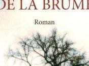 Prince brume, roman Carlos Ruiz Zafon