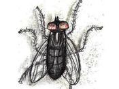 Dans série bêtes, fourmis poils, fourrures tout