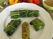Farcis végétariens (vigne-capucine-consoude-fanes)