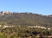 Duilhac sous Peyrepertuse, route châteaux cathares