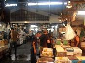 Tsujiki Market Tokyo frais poisson