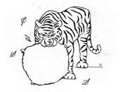 Réveiller tigre
