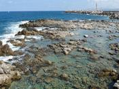 Crète Agia Pelagia, Rethymnon, raki moussaka