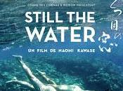 "CINEMA: ""Still water"" (2014), aller plus haut further"