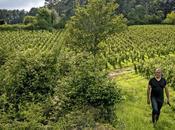 colère Emmanuel Giboulot, vigneron combattant