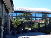 Sealup, Lomazzo
