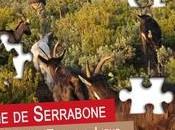 Epargne solidaire pour ferme Serrabone