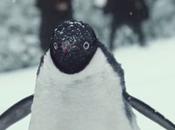 publicité Noël 2014 John Lewis