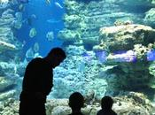 virée l'aquarium Paris