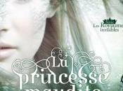 Princesse Maudite Julie Kagawa