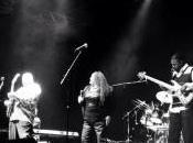 Chicago Blues Festival 2014 exceptionnel