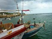 Hors sentiers battus Lanka péninsule Jaffna côte nord