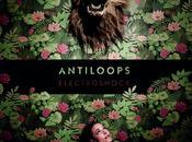 Antiloops Electroshock