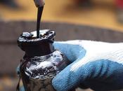 pétrole sera bientôt énergie renouvelable