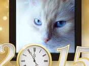 Bonne heureuse année 2015