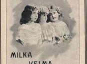 1907 Suchard, première multinationale chocolat