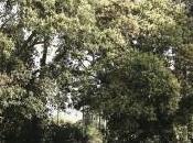 Exposition sert s'oublie VANDY RATTANA HARUN FAROCKI CAPC Bordeaux