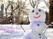 Tempête Juno Snowmageddon York jour d'après.