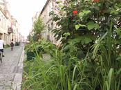 Création d'une jardin exemple Bordeaux