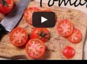 tomates plus vraies nature pâte Fimo