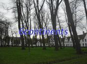 Bruges: N°7: béguinage