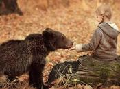 PETIT OURS Terry Dinning Gill Guile