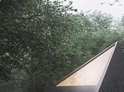 Cabin forest Tomek Michalski