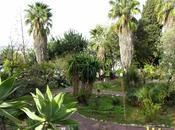bourse plantes printemps jardin botanique Nice