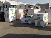 Yemen Airbus disposition d'Action contre Faim atterrit Djibouti avec tonnes matériel humanitaire