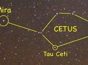(Vraisemblablement) planètes habitables dans système voisin Ceti