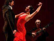 Costumes flamenco