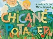 Chicanes potager vente Amazon.