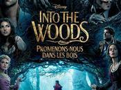 Into woods Marshall avec Meryl Streep, Anna Kendrick, Emily Blunt, James Corden, Chris Pine, Johnny Depp