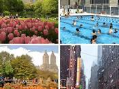 quelle période l'année york est-elle moins chère agréable