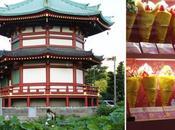 Première étape: Tokyo (Part Asakusa, Tree Tower, Ueno, Harajuku, Shinjuku, Mont Fuji)
