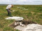Angleterre: premier cercle pierres être découvert dans Dartmoor depuis plus