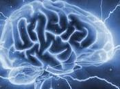 fuite cerveaux, quand France s'auto-mutile