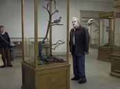 pigeon perché branche philosophait l'existence, Andersson