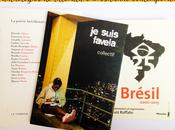 anthologies littérature brésilienne contemporaine