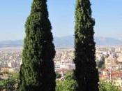Septembre premiers gazouillis Athènes